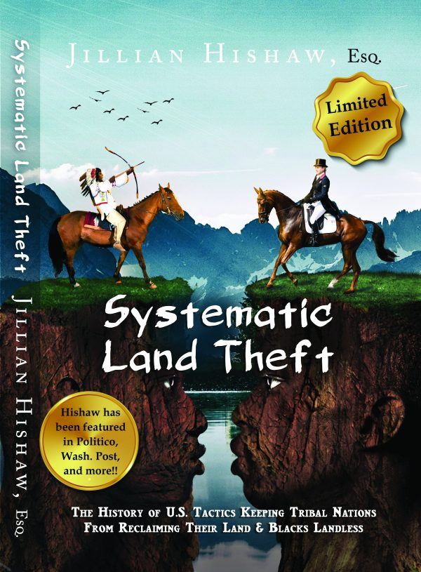 Systematic Land Theft - A Limited Brief Edition